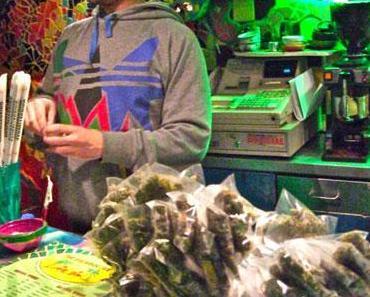 Coupe du Cannabis à Amsterdam