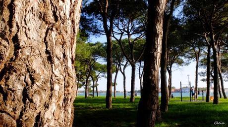 Venise, détente au jardin