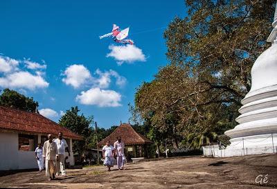 Insta Lanka #5 - Le clic photo de Géraldine
