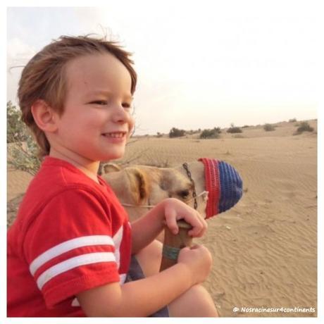 Safari dans le désert de Dubaï - 2009