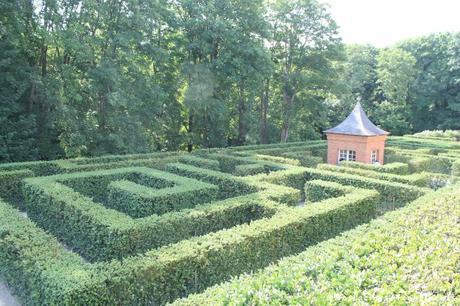Le labyrinthe aux mille buis