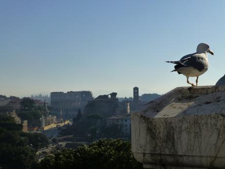 Mes coups de cœur à Rome ♥