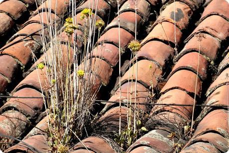 toit en brique d'une maison du quartier de la Candelaria de Bogotá