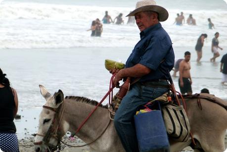 zoom sur le vendeur de tamales sur un âne sur la plage de Pedernales