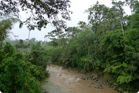 Rivière des Tsachila à Santo Domingo de los Colorados