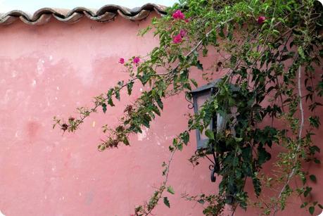 mur rose du patio de la casa de la cultura de Popayán
