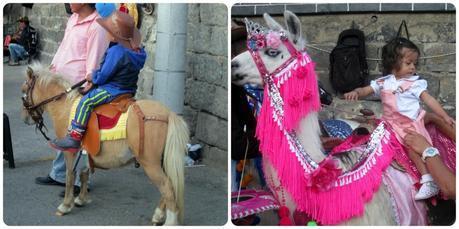 poney et lama au Sanctuaire de Las Lajas de Ipiales