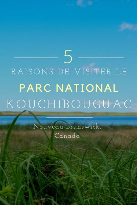 Le Parc National Kouchibouguac Entre Nature Et Culture