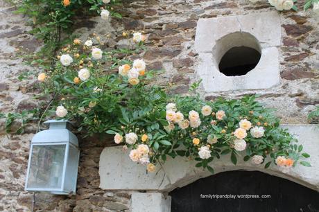 chapelle-saint-florent-chateau-baronniere-cour-carree-roses-1