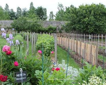Superbe parc du château de la Baronnière !