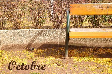vienne automne feuilles mortes
