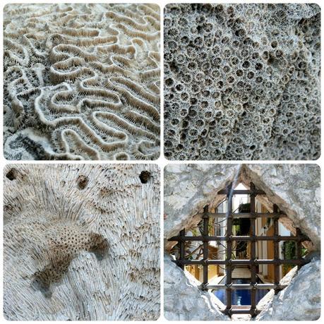 textures très apparentes de coquillages fossilisés dans la pierre ainsi que vue sur une piscine d'une maison à travers une grille à Carthagène