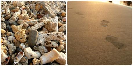 Zoom sur des coquillages et traces de pas dans le sable sur une plage de Carthagène