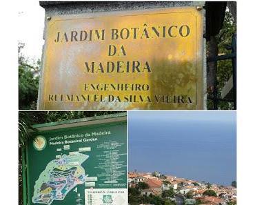 Balade au jardin botanique de Funchal, le temps de mettre le temps sur pause ...