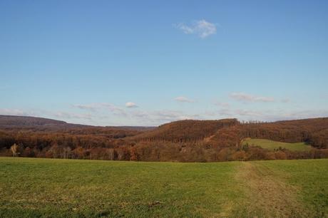 vienne randonnée liesing stadwanderweg 6 wienerwald