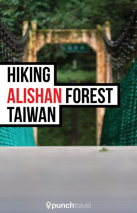 alishan_forest_taiwan