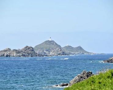 Des îles Sanguinaires d'Ajaccio aux tortues d'A Cupulatta
