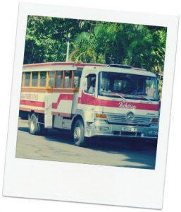truck_tahiti