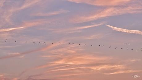 Et dans le ciel de Venise ....