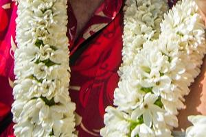 collier fleur polynésie