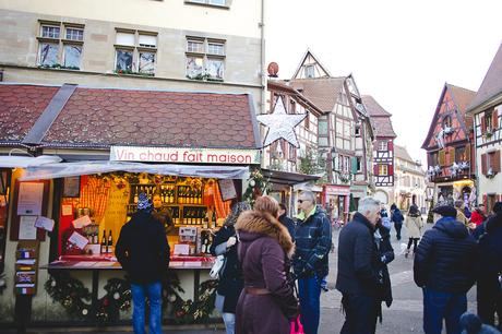 L'Alsace pittoresque - Colmar et tous les autres petits bijoux