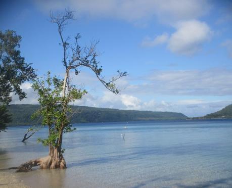 merci Vanuatu