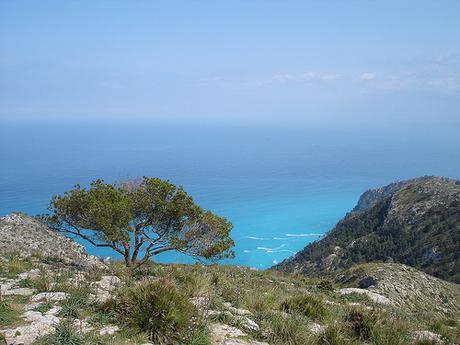 Majorque - Talaia d'Alcudia