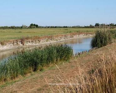 La Vendée côté marais