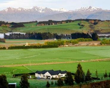 PVT NZ : Au bout de 6 mois