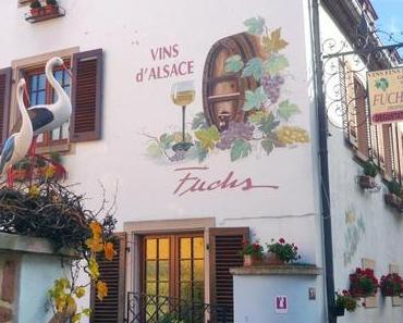 Découvrir Sigolsheim, village fleuri du vignoble alsacien