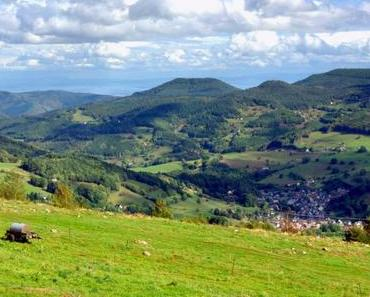 Découvrir la Vallée de Kaysersberg dans les Vosges