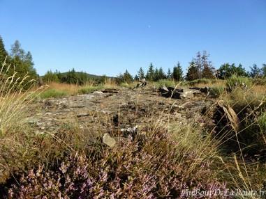 Étape 1 – Trek autour du Mont-Lozère
