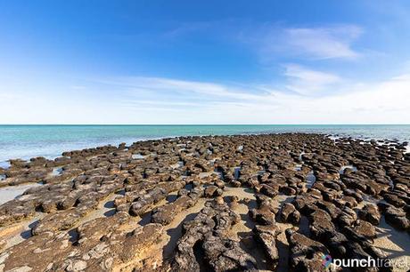 coral_coast_australia-9