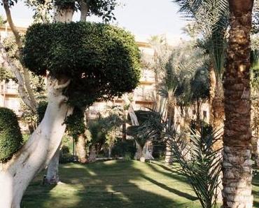 Egypte (2/3): Louxor, la maison des siècles