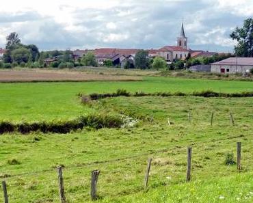 Découvrir le vignoble des Côtes-de-Toul en Lorraine