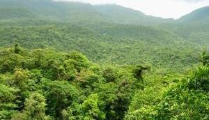 Hojancha l'oasis nature Guanacaste