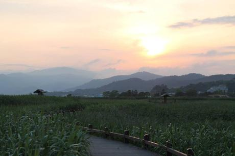 Baie de Suncheon : trésor de la Corée du Sud