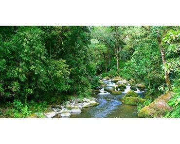 Savegre comme une nouvelle Réserve de la Biosphère au Costa Rica inscrite à l'UNESCO