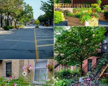 Visiter Montréal, le Mile end et plus encore