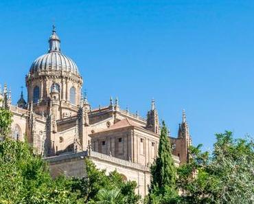 Salamanca la perle culturelle de l'Espagne