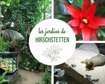 Vienne - Le parc floral de Hirschstetten au fil des saisons