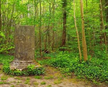 Balade-découverte dans le Parc de Noisiel