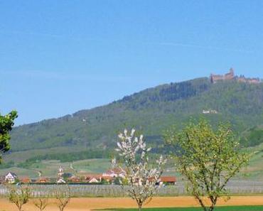 Saint-Hippolyte au pied du Haut-Kœnigsbourg