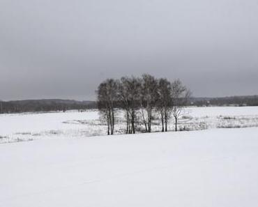 Borodino, hiver