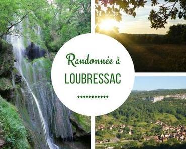 Une journée dans la vallée de la Dordogne : Randonnée sur les hauteurs de Loubressac