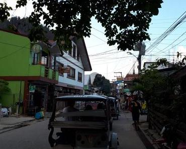 Carnet de voyage à Palawan : El Nido, Port Barton, Puerto Princesa, aux Philippines