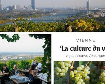 La culture du vin à Vienne : de la vigne aux Heuriger