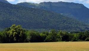 magnifique Faucille dans Jura