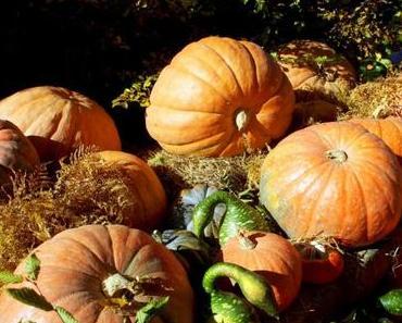 Halloween en Alsace : 5 lieux de légende