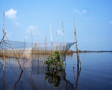 Tonlé Sap, derniers jours